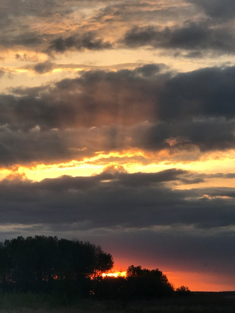 Column 59 - sunset on the day he died.JPG